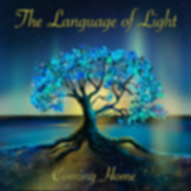 Language of Light Cover Final.png