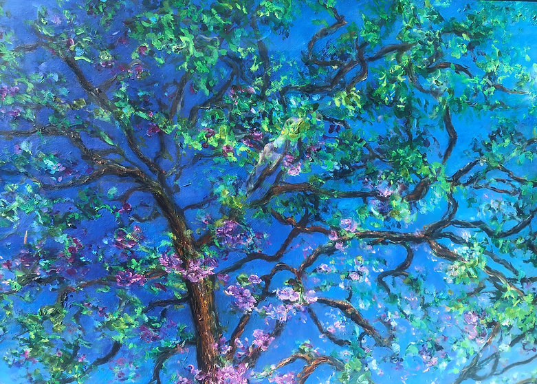 Kersenbloesem 80 x 60 cm. 1.jpg