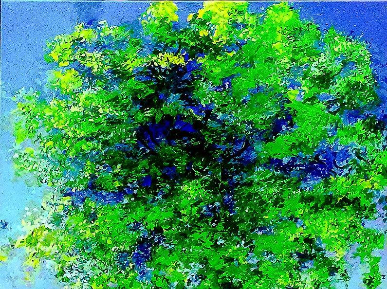 Tree in Sunshine 80 x 60 € 350,-- - 50%