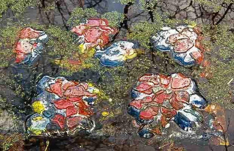 34 Leaf in Glas copy.jpg