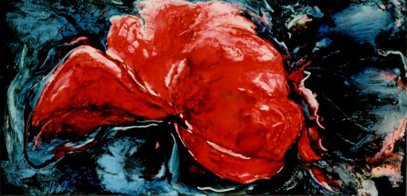 Karmozijnrode lotus185 x 165 cm.  .png