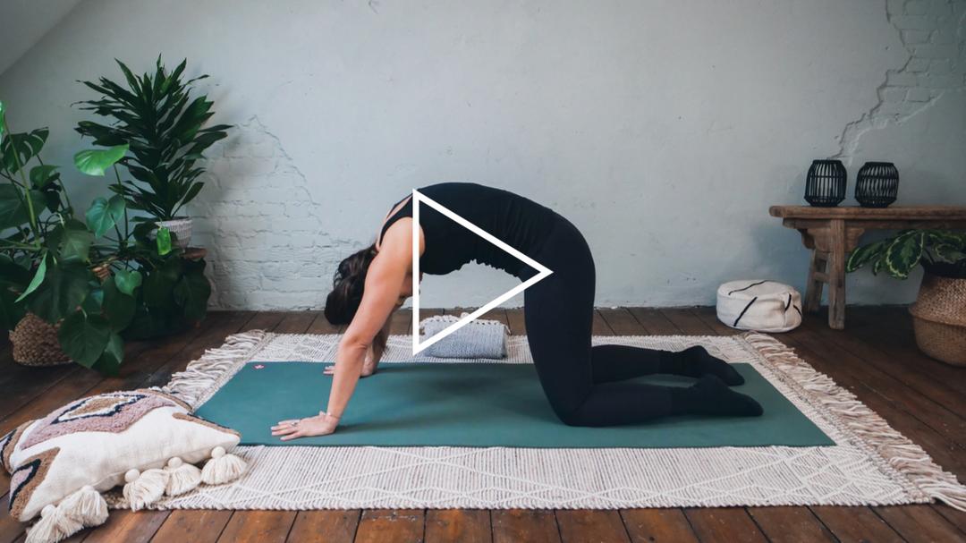 Tumbnail Yin Yoga 02 - Healty Spine.PNG