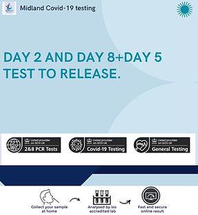 DAY 2 AND DAY 8 + DAY 5 jpg.jpg