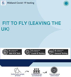 FIT TO FLY LEAVING THE UK.jpg