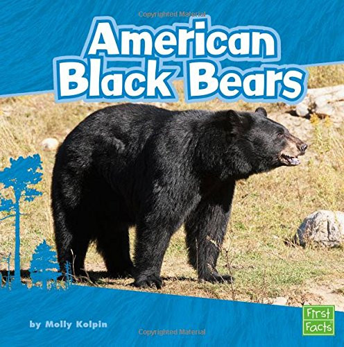 Cover of American Black Bears by Molly Kolpin.