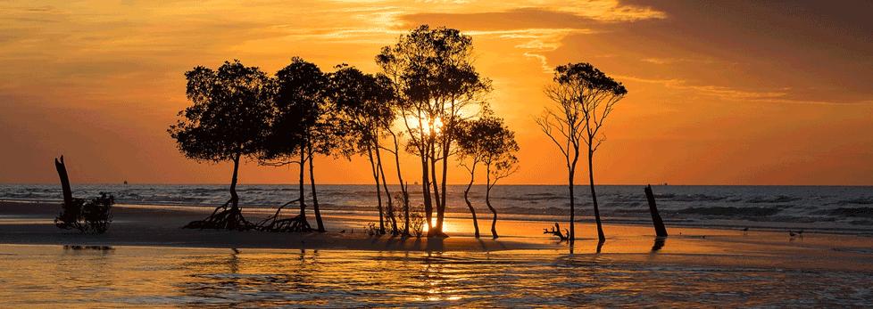 Darwin Northern Territory.png