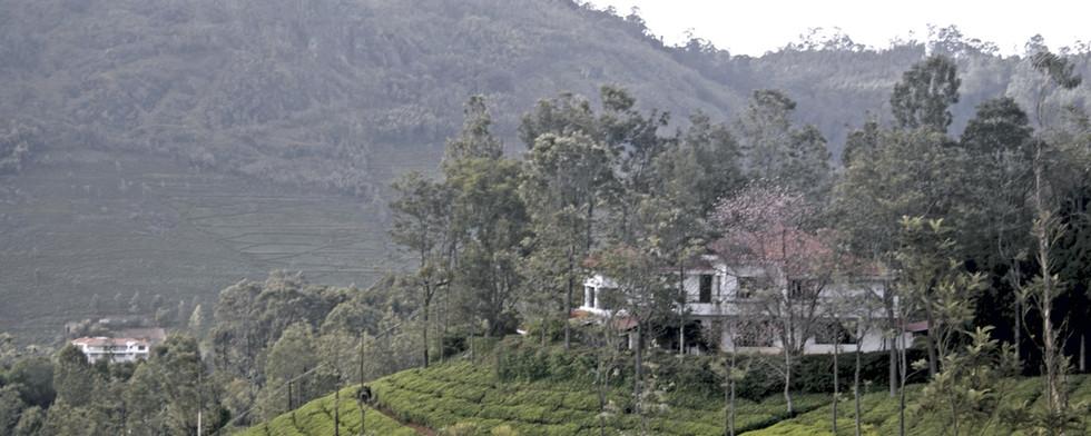 Tranquilitea-plantation-farm-stay-Coonoor