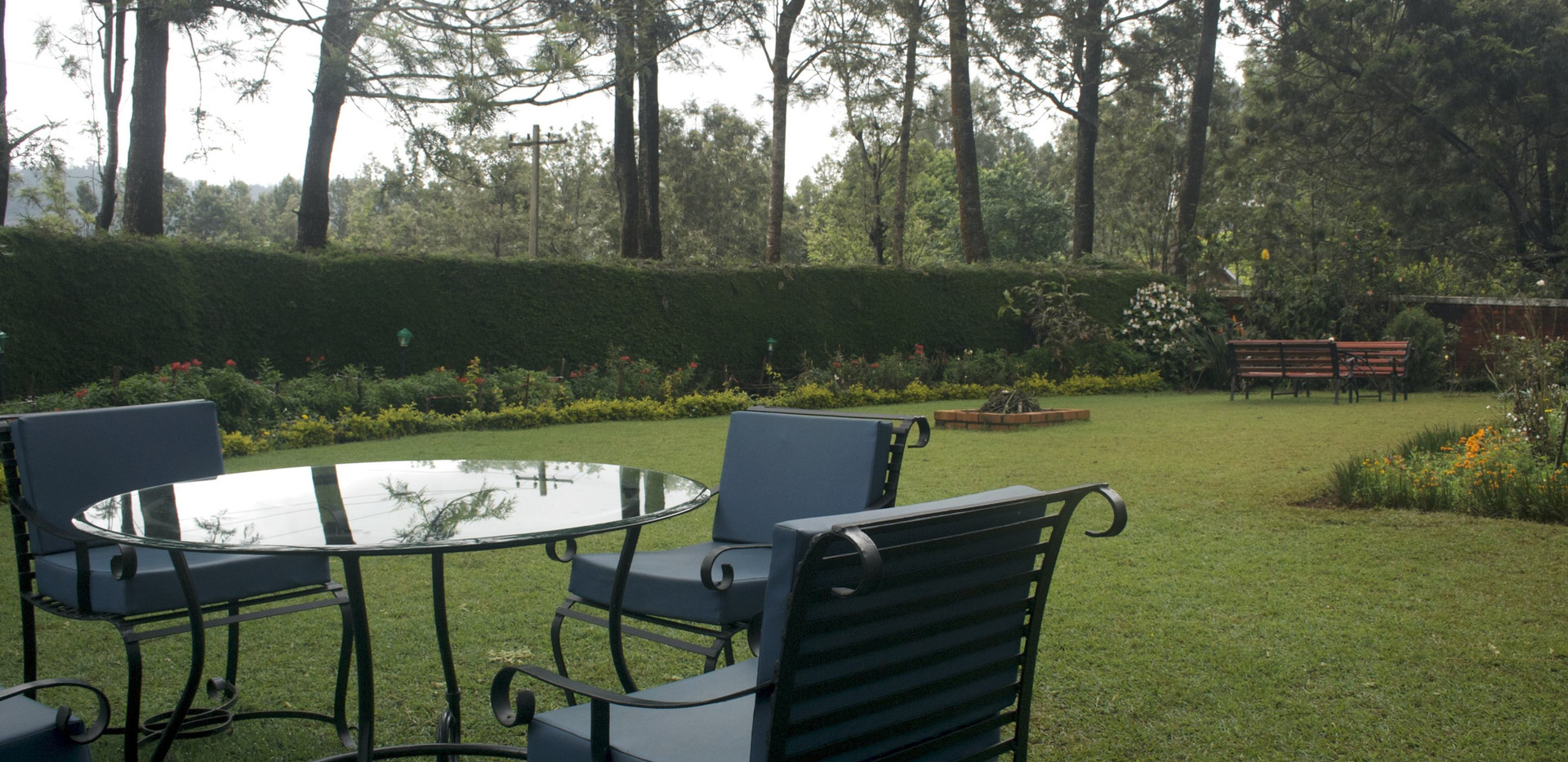 garden-at-the-tranquilitea-home-stay-in-Coonoor