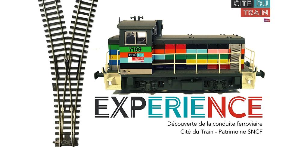 Y Experience