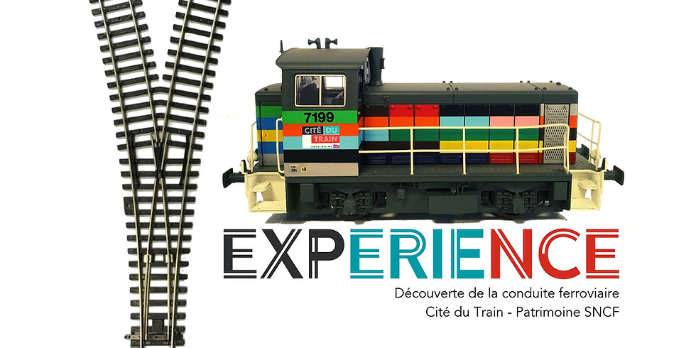 Y - Experience