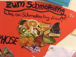 20180706_schmetterlinge (1)