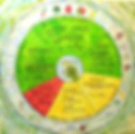 Ernährungspyramide als RAD