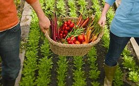agricultura-cke.jpg
