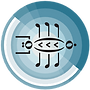 SongBug-Logo-Circle-Only.png