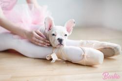 BallerinaBarbie20