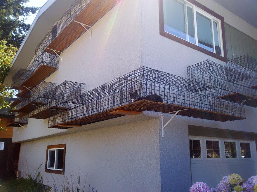 Venkovní kočičí dráha