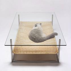 Konferák a kočičí pelíšek