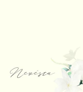 Svatební jmenovky Bílá sláva - ivory, 75x105 mm