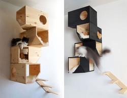 Kočičí dřevěný strom
