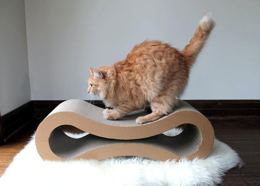 Moderní pelíšek pro kočičky