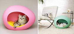 Kočičí Egg Pod