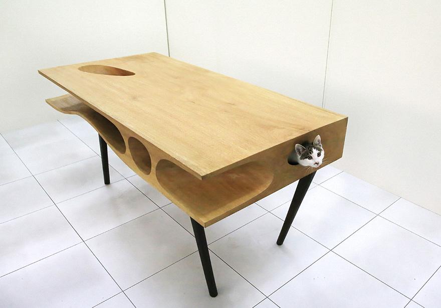 Kočičí a pracovní stůl