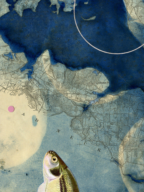 """Marty Ittner  """"20 Approaches to Baltimore Harbor"""" Cyanotype print collage with vintage maps"""