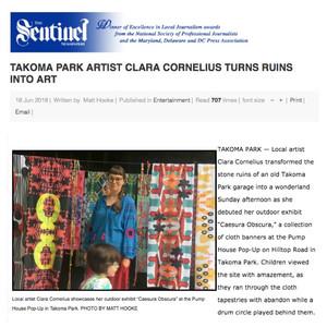 The Sentinel - Takoma Park Artist Clara Cornelius Turns Ruin Into Art
