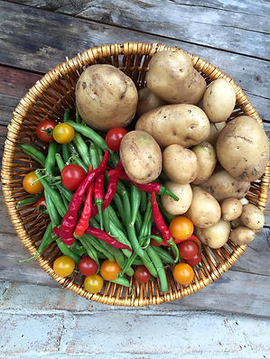 One parents harvest of home grown food