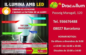 DRAC DE LLUM Med. Pagina 03 copia.png