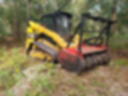 Flagler county land clearing
