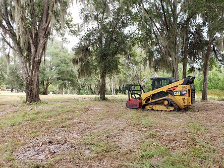 Osceola County Land Clearing