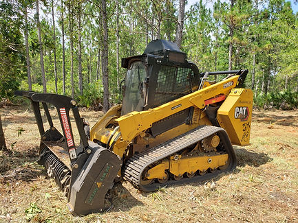 Palatka land clearing