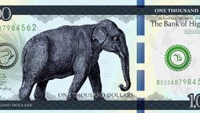 Digital fiat currency as a bearer instrument