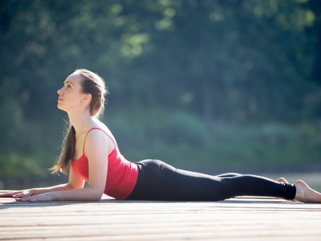Featured Exercise: Sphinx Pose