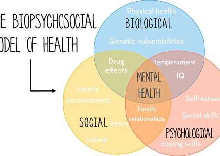 Total Wellness: Mind, Body & Environment