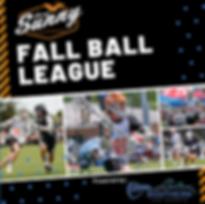 Fall Ball League.png