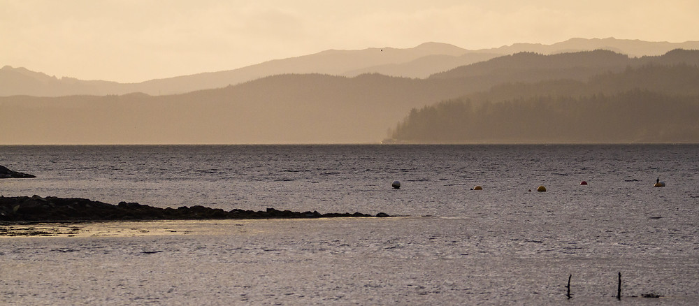 Loch Fyne, Cowal, Argyll