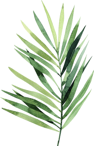 Palm 2.png