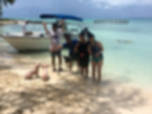 Tours in bahamas