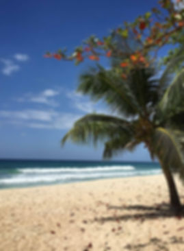 West-Coast-Beaches-Barbados.jpg