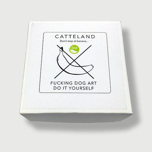 Catteland - alito di rana