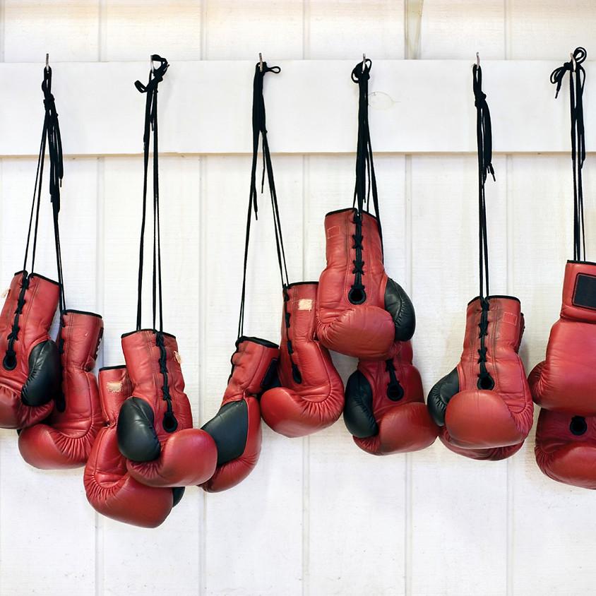 Beginner Boxing Lessons