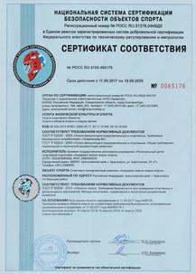 Сертификат Академия зимних видов спорта