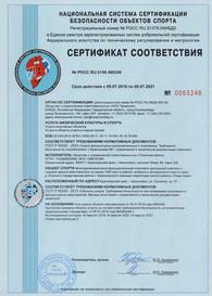 Сертификат Платинум Арена