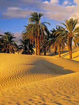 tour-organizzato-costa-atlantica-marocco