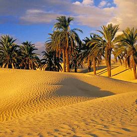 tour-marocco-mare-e-deserto