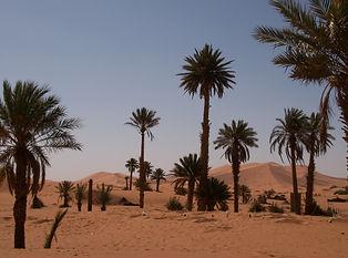 ErgChebbi-Dune-deserto.JPG