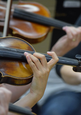 OSO Violins