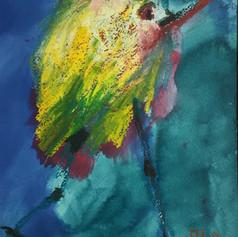 Funy Bird 28